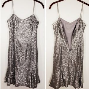 Banana Republic  silver sequined  dress size 6P